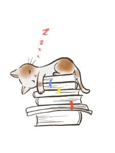 猫の居眠り